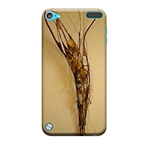 Ebby Premium Printed Mobile Back Case Cover With Full protection For Apple iPod Touch 5 (Designer Case)
