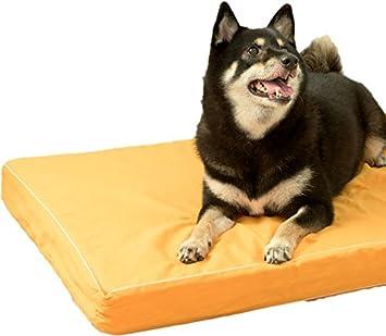 cd13d023717b1 老犬用ドッグケアマットMDXサイズ☆♪/ ブラウン