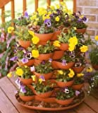 Stack and Grow Terracotta Planter with 20 Planting Pockets