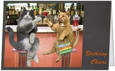Birthday Cheers Cat Fun Funny Humor Husband Brother