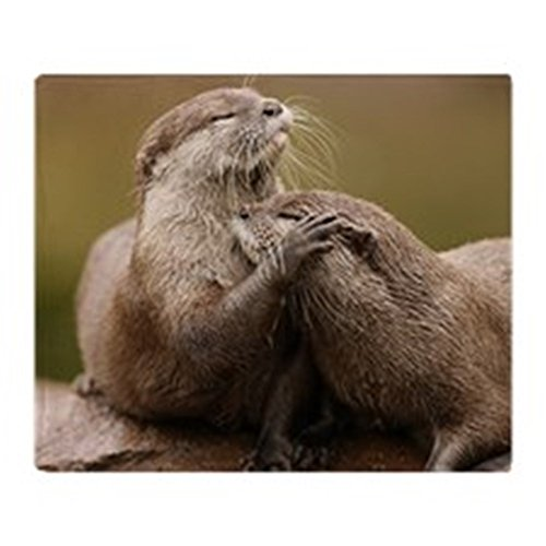 cafepress-oriental-short-clawed-otters-soft-fleece-throw-blanket-50x60-stadium-blanket