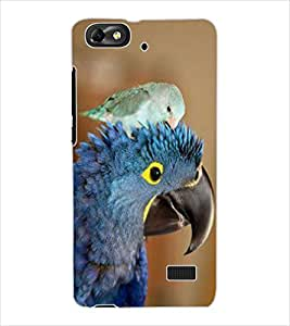 ColourCraft Cute Parrots Design Back Case Cover for HUAWEI G PLAY MINI