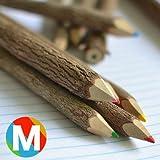 AD2 ネイチャーペンシル マルチカラー M (木の色鉛筆10本セット)