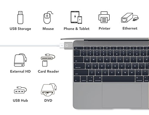 World's Smallest USB-C to USB-A Full