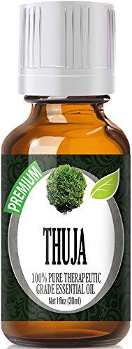Thuja (30ml) 100% Pure, Best Therapeutic Grade Essential Oil - 30ml / 1 (oz) Ounces
