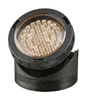 Laguna PowerGlo LED Mini Pond Light Kit with 2-Pack 40-Bulb LED Lights from Hagen
