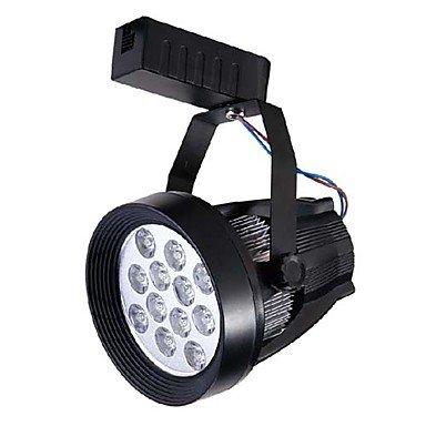 Mini Led Track Light, Modern Black Aluminum Painting Warm White Ac100-240V