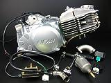 ミニモト LIFAN製160ccエンジン