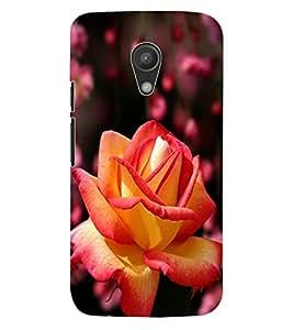 ColourCraft Rose Flower Design Back Case Cover for MOTOROLA MOTO G2