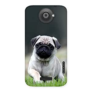 Delighted Pug Dog Grass Multicolor Back Case Cover for HTC One X