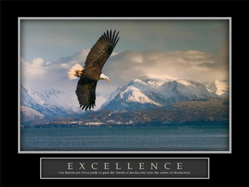 soar like an eagle quotes and sayings quotesgram