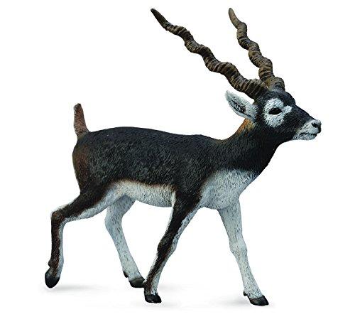 CollectA Black Buck Figure