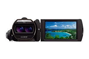 Sony HDR-TD30V Full HD 3D Handycam Camcorder with 3.5-Inch LCD (Black)