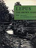 Lepus: the brown hare (0510155111) by BB""""