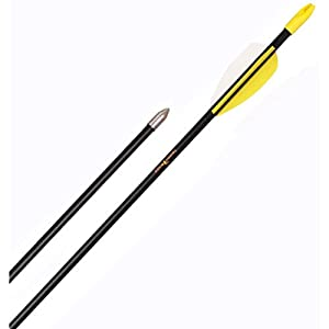 Trophy Ridge 26in Safetyglass Target Youth Arrows - 72 Pack