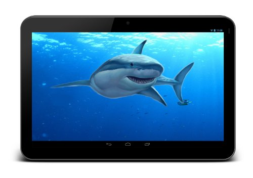 DUAL CAMERA TravelTek 7″ Inch Tablet Android Google 4.2.2 Jelly Bean