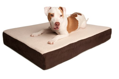 Dog Bed: Triple Support Orthopedic Dog Bed Size: Extra Large (50
