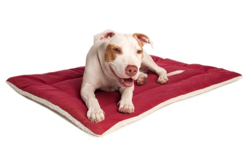 Great Paw Downtime Reversible Pet Bed, X-Large