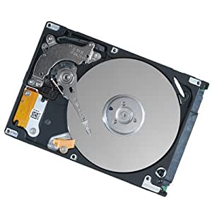 500GB 2.5 Inchs SATA HDD Hard Disk Drive for HP Pavilion DV6-1354US DV6-1355DX DV6-1358CA DV6-1359WM DV6-1360SS DV6-1360US DV6-1375DX DV6-1378NR DV6-1388LA DV6-2010SA DV6-2010SG DV6-2010SS DV6-2012SF DV6-2015SF DV6-2020CA DV6-2020SA Laptops