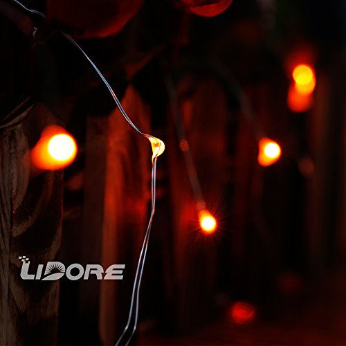 LIDORE Micro LED 20 Orange String Lights with Timer, Battery Operated on 7.87ft Long Silver ...
