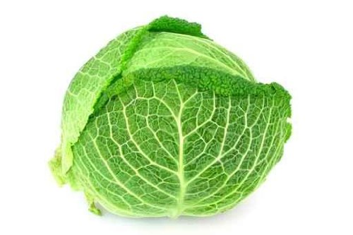 Food Wall Decals Cabbage - Isolated - 24 Inches X 16 Inches - Peel And Stick Removable Graphic