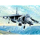 アメリカ海兵隊 AV-88B ハリアー2