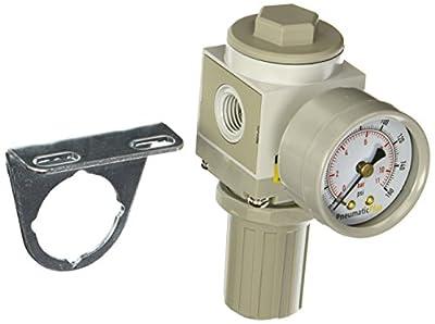 "PneumaticPlus SAR2000M-N02BG Air Pressure Regulator, 1/4"" Pipe Size, NPT with Gauge and Bracket"