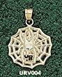 "Univ Of Richmond ""Ur"" Spider Web Charm/Pendant"