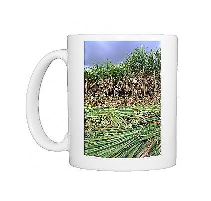 Photo Mug Of Sugar Cane Cutting By Hand