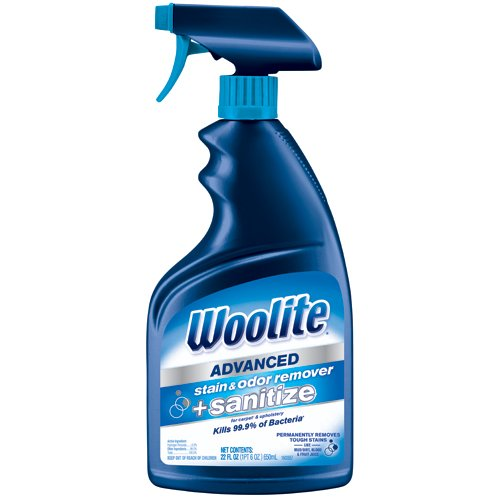 woolite-advanced-stain-odor-remover-sanitize-22floz
