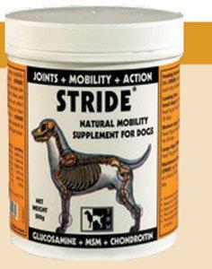 stride-glucosamine-chondroitin-msm-500g-powder