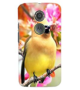 ColourCraft Bird with Flowers Design Back Case Cover for MOTOROLA MOTO X2