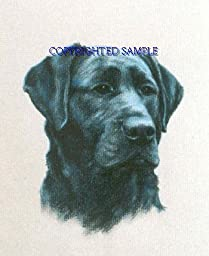Labrador Retriever - Portrait by Cindy Farmer, Black