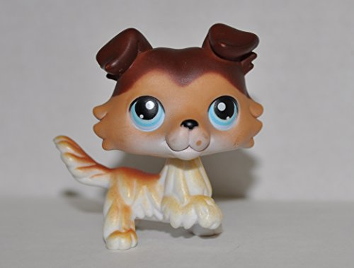 Collie #58 (Raised Paw: Brown, Blue Eyes) - Littlest Pet Shop (Retired) Collector Toy - LPS Collectible Replacement Single Figure - Loose (OOP Out of Package & Print)