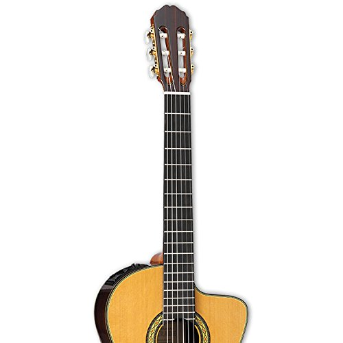 Takamine Th5c Kit 2 Classical Nylon String Acoustic Guitar