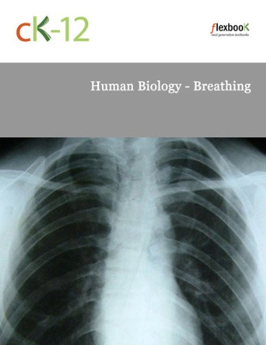 Human Biology - Breathing
