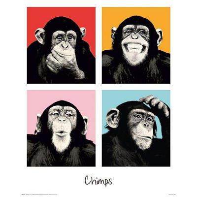 Monkey Chimp - Pop Color. Art Print Poster (15.75X19.75)