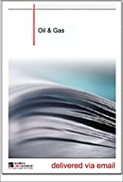 Oil & Gas Equipment Industry Report