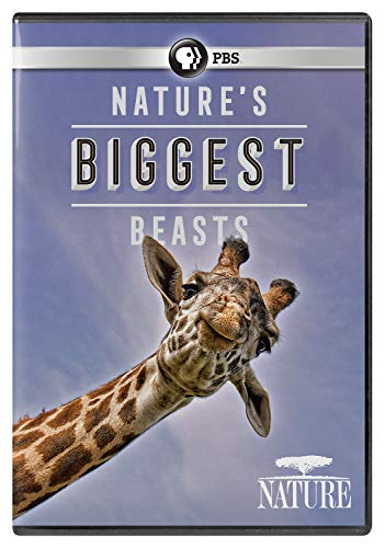 DVD : Nature: Nature's Biggest Beasts