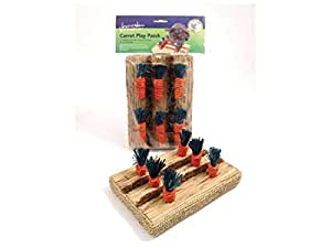 Rosewood Small Animal Activity Toy Carrot Play Patch Boredom Breaker