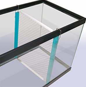 Penn plax medium tank divider for aquariums 11 3 8 x 9 5 8 for Fish tank divider