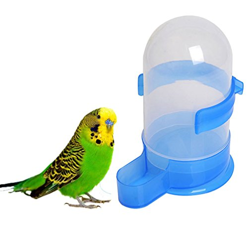 Bird Food Feeding Drinking Water Feeder Bowl Feed Dispenser With Holder For Parrot Macaw African Greys Budgies Parakeet Cockatiels Conure Cage (Water Dish For Bird Cage compare prices)
