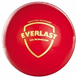 SG Everlast Cricket Ball (Red)