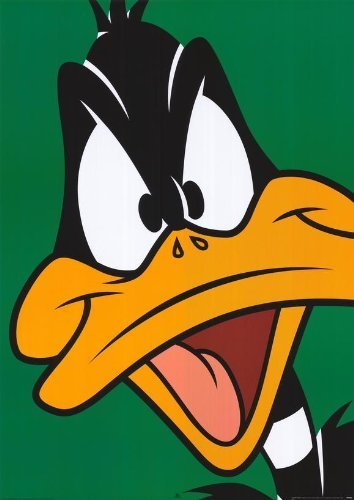 daffy-duck-27-x-40-movie-poster-style-a-by-postersdepeliculas