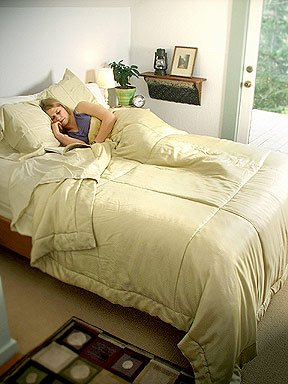 DreamSacks King Silk Comforter