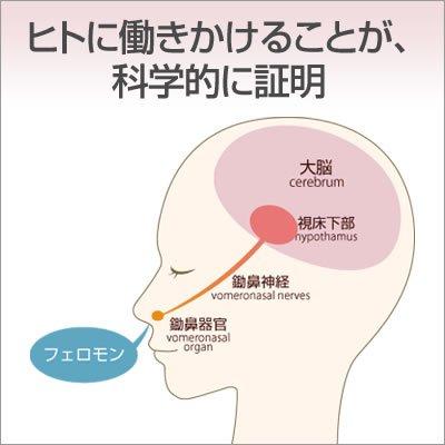 【濃度2倍】ラブアトラクション・プレミアム(男性用)