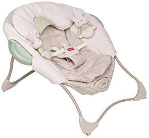 Fisher-Price Baby Papasan