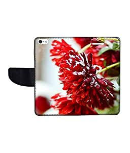 KolorEdge Printed Flip Cover For Apple IPhone 5 Multicolor - (43KeMLogo09417IPhone5)