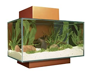 Fluval edge aquarium set burnt orange 6 gallon fish tank coffee table pet - Fish tank coffee table amazon ...
