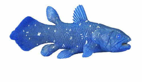 Safari Ltd   Dinosaurs Coelacanth Toy Figure